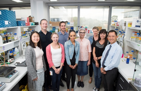 A/Prof Andrew Wei and the Lab Team
